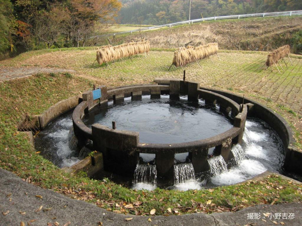 音無井路十二号(円形)分水